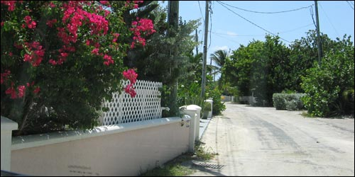 Cayman Private Road 2
